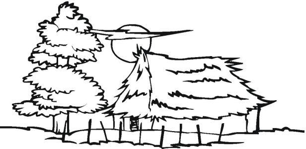 《朗读者》经典语录集锦!_张爱玲散文_快睡觉的时候姑姑听见草丛里传来声音
